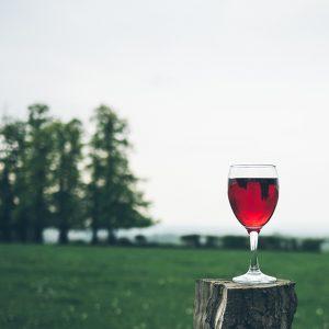 Living Wine, Transforming Wine